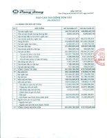 Báo cáo tài chính quý 2 năm 2013 - Công ty Cổ phần Nhựa Rạng Đông