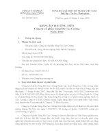 Báo cáo thường niên năm 2013 - Công ty Cổ phần Sông Đà Cao Cường