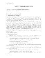 Báo cáo thường niên năm 2008 - Công ty Cổ phần Sông Đà 9