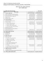 Báo cáo tài chính quý 2 năm 2010 - Công ty cổ phần Bao bì Nhựa Sài Gòn