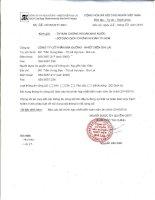 Báo cáo tài chính hợp nhất năm 2014 (đã kiểm toán) - Công ty Cổ phần Mía đường Nhiệt điện Gia Lai