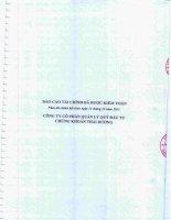 Báo cáo tài chính năm 2011 (đã kiểm toán) - Công ty Cổ phần Quản lý Quỹ Đầu tư Chứng khoán Thái Dương