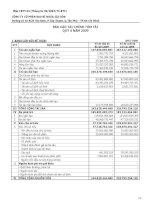 Báo cáo tài chính quý 4 năm 2009 - Công ty cổ phần Bao bì Nhựa Sài Gòn