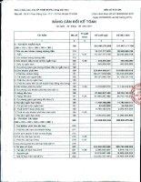 Báo cáo tài chính quý 2 năm 2011 - Công ty Cổ phần Thiết bị Phụ tùng Sài Gòn