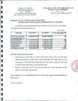 Báo cáo tài chính quý 1 năm 2013 - Công ty Cổ phần Quốc tế Hoàng Gia