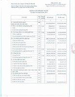 Báo cáo tài chính công ty mẹ quý 2 năm 2014 - Công ty cổ phần Địa ốc Dầu khí