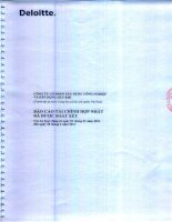 Báo cáo tài chính hợp nhất quý 2 năm 2013 (đã soát xét) - Công ty Cổ phần Xây dựng công nghiệp và dân dụng Dầu khí