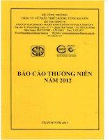 Báo cáo thường niên năm 2012 - Công ty Cổ phần Thiết bị Phụ tùng Sài Gòn