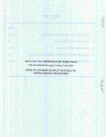 Báo cáo tài chính năm 2010 (đã kiểm toán) - Công ty Cổ phần Quản lý Quỹ Đầu tư Chứng khoán Thái Dương