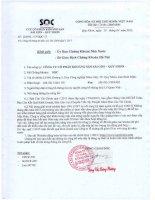 Báo cáo tài chính quý 1 năm 2015 - Công ty Cổ phần Khoáng sản Sài Gòn - Quy Nhơn