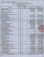 Báo cáo tài chính hợp nhất quý 2 năm 2013 - Công ty Cổ phần Đầu tư Phát triển Đô thị và Khu Công nghiệp Sông Đà