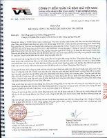 Báo cáo tài chính quý 2 năm 2011 (đã soát xét) - Công ty Cổ phần Đầu tư Phát triển Đô thị và Khu Công nghiệp Sông Đà