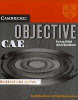Objective CAE workbook
