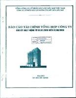 Báo cáo tài chính quý 1 năm 2013 - Công ty Cổ phần Xây lắp Đường ống Bể chứa Dầu khí