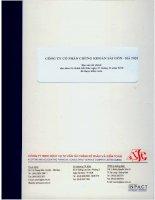 Báo cáo tài chính năm 2010 (đã kiểm toán) - Công ty Cổ phần Chứng Khoán Sài Gòn Hà Nội
