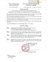 Nghị quyết Hội đồng Quản trị - Công ty Cổ phần Địa ốc Sài Gòn Thương Tín