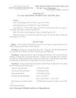 Nghị quyết đại hội cổ đông ngày 11-11-2010 - Công ty Cổ phần Sông Đà 9.06