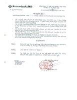Nghị quyết Hội đồng Quản trị - Công ty Cổ phần Chứng khoán Ngân hàng Sài Gòn Thương Tín
