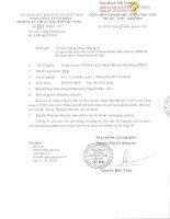 Báo cáo tài chính công ty mẹ quý 1 năm 2014 - Tổng Công ty Cổ phần Dịch vụ Kỹ thuật Dầu khí Việt Nam