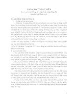 Báo cáo thường niên năm 2011 - Công ty Cổ phần Xi măng Sông Đà
