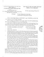 Báo cáo tài chính công ty mẹ quý 2 năm 2013 (đã soát xét) - Tổng Công ty cổ phần Xây lắp Dầu khí Việt Nam