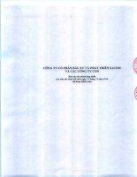 Báo cáo tài chính hợp nhất năm 2014 (đã kiểm toán) - Công ty Cổ phần Đầu tư và Phát triển Sacom