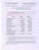 Báo cáo tài chính quý 1 năm 2015 - Công ty Cổ phần Khách sạn Sài Gòn