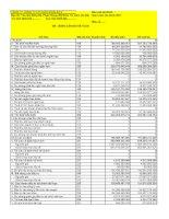 Báo cáo tài chính hợp nhất quý 1 năm 2011 - Công ty Cổ phần Sông Đà 9