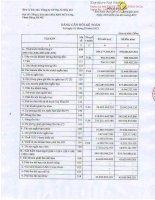 Báo cáo tài chính công ty mẹ quý 1 năm 2013 - Công ty cổ phần Địa ốc Dầu khí