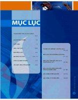 Báo cáo thường niên năm 2010 - Tổng Công ty cổ phần Xây lắp Dầu khí Việt Nam