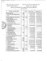 Báo cáo tài chính quý 1 năm 2008 - Công ty cổ phần Bia Thanh Hóa