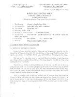 Báo cáo thường niên năm 2010 - Công ty Cổ phần Sông Đà 6