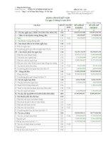Báo cáo tài chính quý 4 năm 2010 - Công ty cổ phần Sông Đà 27