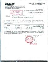 Báo cáo tài chính hợp nhất quý 1 năm 2013 - Công ty Cổ phần Đầu tư và Phát triển Sacom