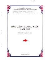 Báo cáo thường niên năm 2011 - Công ty cổ phần Đầu tư - Phát triển Sông Đà