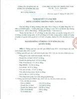 Nghị quyết Đại hội cổ đông thường niên - Công ty TNHH MTV Sông Đà 10.1