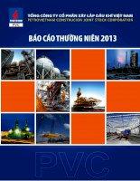 Báo cáo thường niên năm 2013 - Tổng Công ty cổ phần Xây lắp Dầu khí Việt Nam