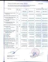 Báo cáo KQKD hợp nhất quý 3 năm 2011 - Công ty Cổ phần Quốc Cường Gia Lai