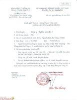 Báo cáo tài chính hợp nhất quý 2 năm 2014 - Công ty Cổ phần Sông Đà 2