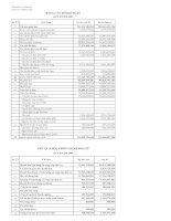 Báo cáo tài chính quý 2 năm 2009 - Công ty Cổ phần Sông Đà 9.06