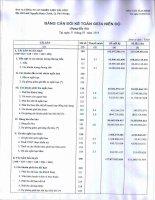 Báo cáo tài chính quý 1 năm 2013 - Công ty Cổ phần Nhiên liệu Sài Gòn