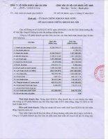 Báo cáo tài chính quý 2 năm 2014 - Công ty Cổ phần Khách sạn Sài Gòn
