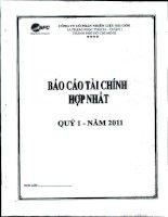 Báo cáo tài chính hợp nhất quý 1 năm 2011 - Công ty Cổ phần Nhiên liệu Sài Gòn