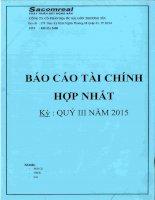 Báo cáo tài chính hợp nhất quý 3 năm 2015 - Công ty Cổ phần Địa ốc Sài Gòn Thương Tín
