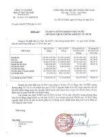 Báo cáo tài chính hợp nhất quý 1 năm 2014 - Công ty Cổ phần Đại lý Vận tải SAFI