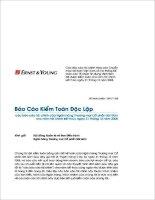 Báo cáo tài chính năm 2008 (đã kiểm toán) - Ngân hàng Thương mại Cổ phần Sài Gòn