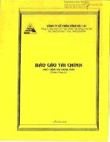 Báo cáo tài chính quý 1 năm 2015 - Công ty Cổ phần Sông Đà 1.01