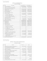 Báo cáo tài chính quý 3 năm 2009 - Công ty Cổ phần Sông Đà 9.06