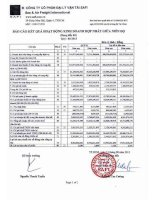Báo cáo tài chính hợp nhất quý 2 năm 2013 - Công ty Cổ phần Đại lý Vận tải SAFI