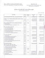 Báo cáo tài chính quý 2 năm 2010 - Công ty Cổ phần Bia Sài Gòn - Miền Trung